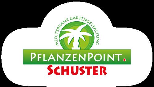 Pflanzenpoint Schuster